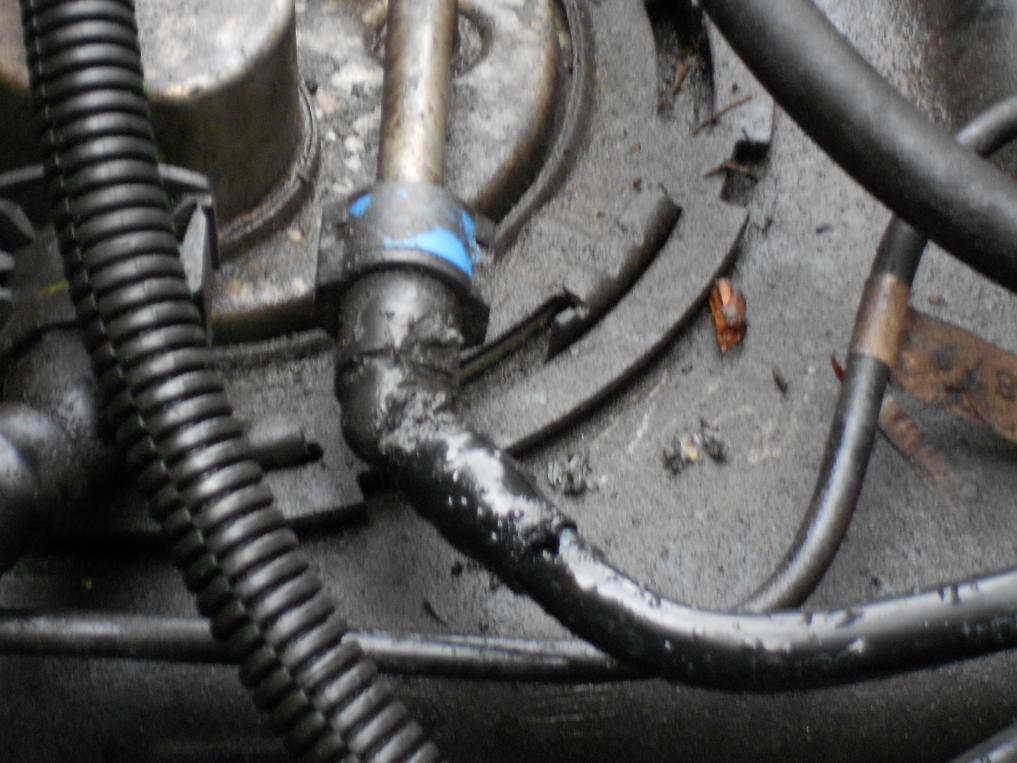 gm 3800 v6 wiring diagram  gm  free engine image for user